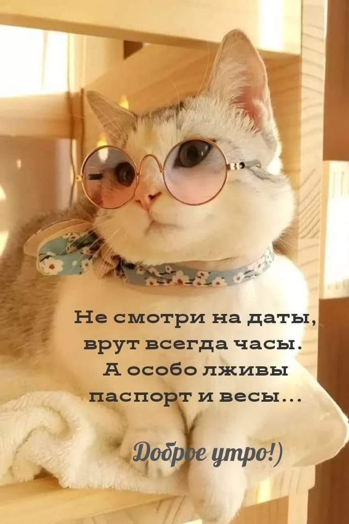 Доброе утро!).