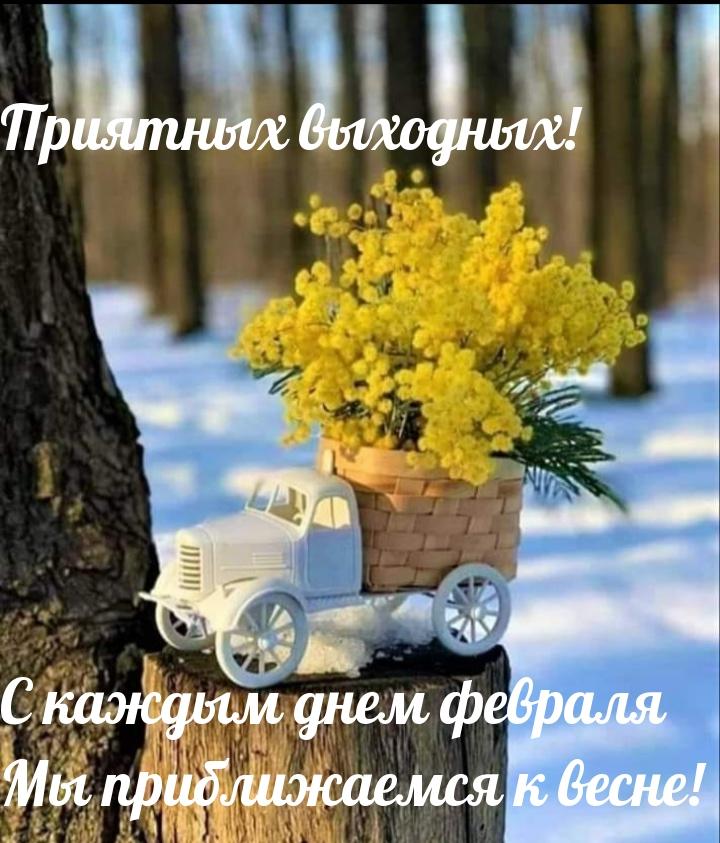 Картинки с надписями Приятных выходных! С каждым днем февраля...