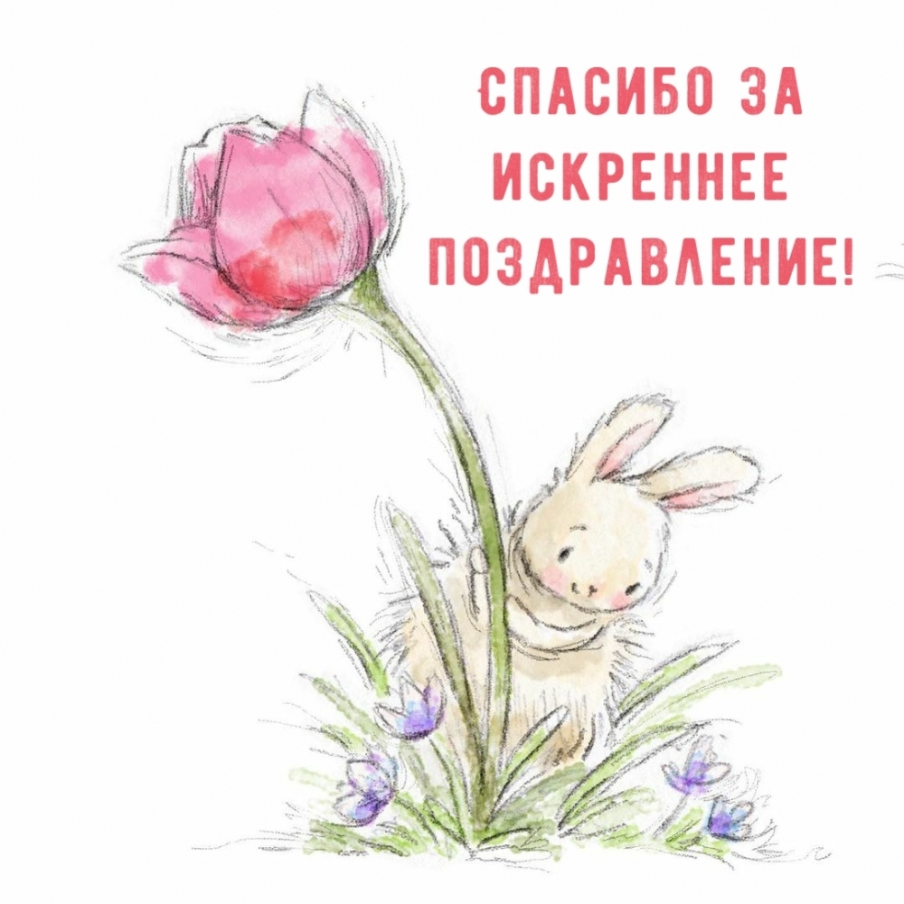 Картинки с надписями Спасибо за искреннее поздравление!