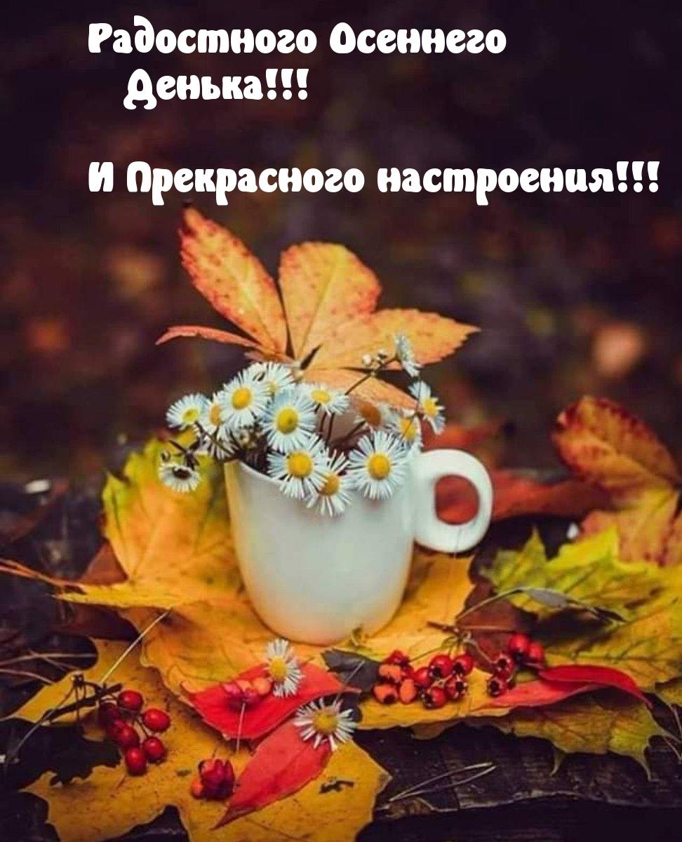 Картинки с надписями Радостного Осеннего Денька!
