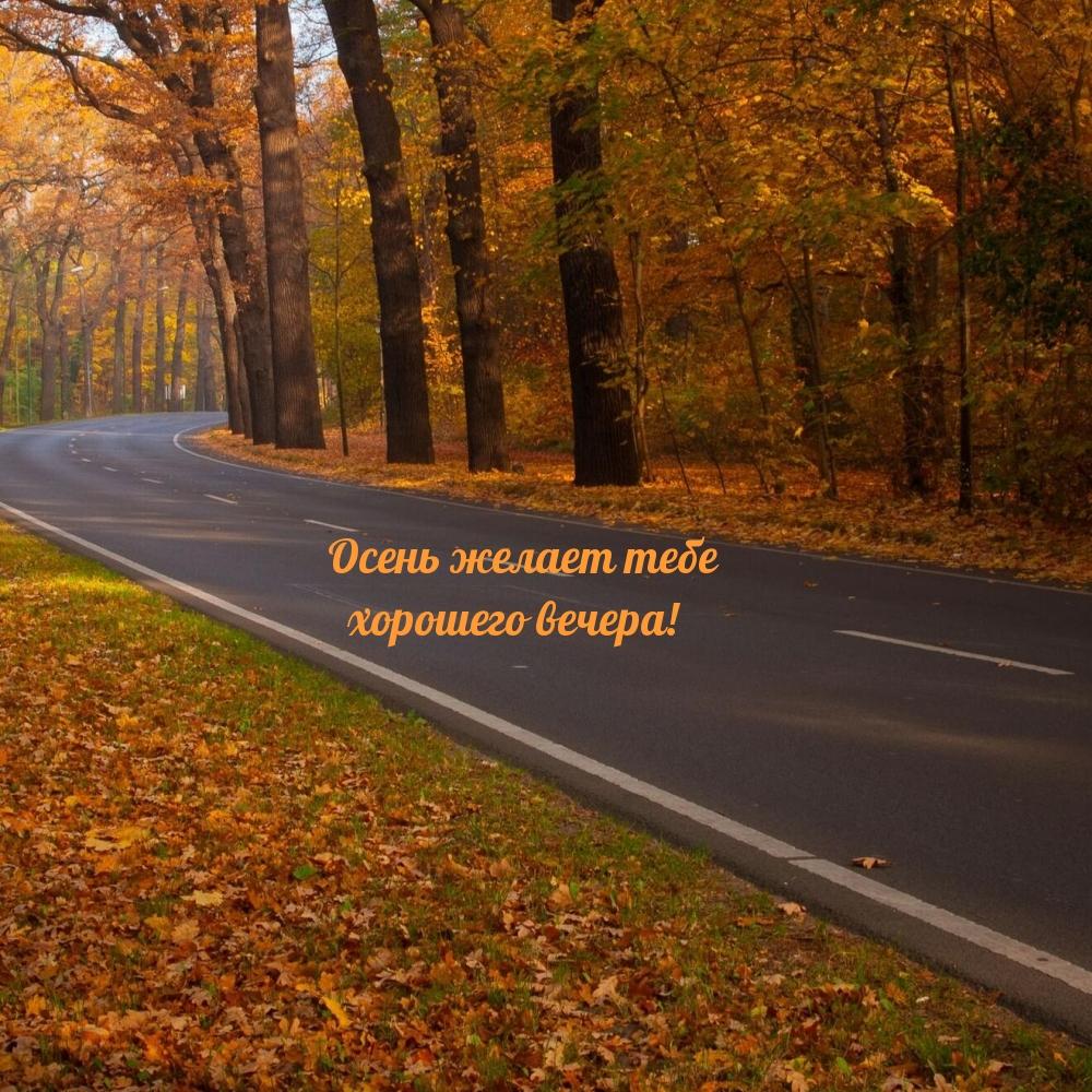 Осень желает тебе хорошего вечера!